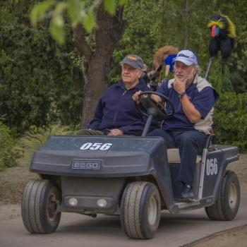 Campeonato de Golf TF 2014-12